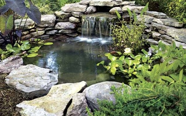 /uploads/pages/463/relaxingbackyardandgardenwaterfalls64640x4001.jpg
